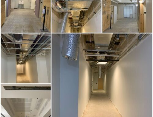 Multiple Floor Tenant Improvement